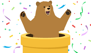 TunnelBear 4.2.6 Crack + Activation Code Free Download